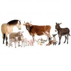 Комбикорм СКГ - смесь кормовая гранулированная