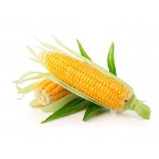 Кукуруза фуражная  мешки по 40 кг (цена действительна до 01.09.2019 ЗВОНИТЕ)